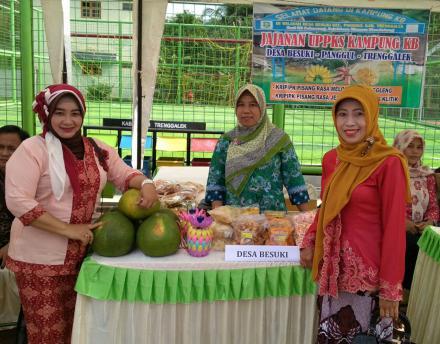 Pameran Hasil Karya Kampung KB Desa Besuki